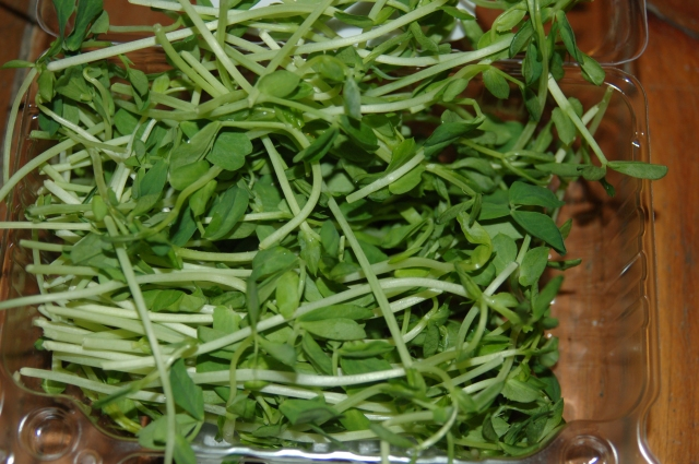 Toss these lovely leaves from the pea plant into a salad or as a sandwich topping.
